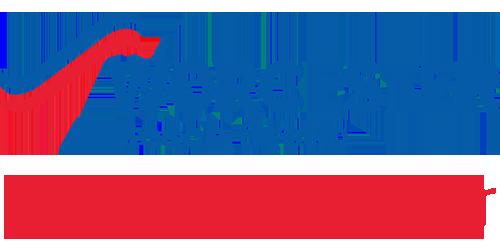 worcester bosch group Tong